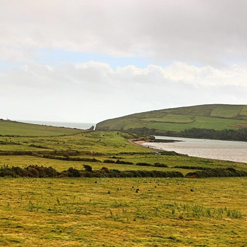 Dingle Tour in Irland