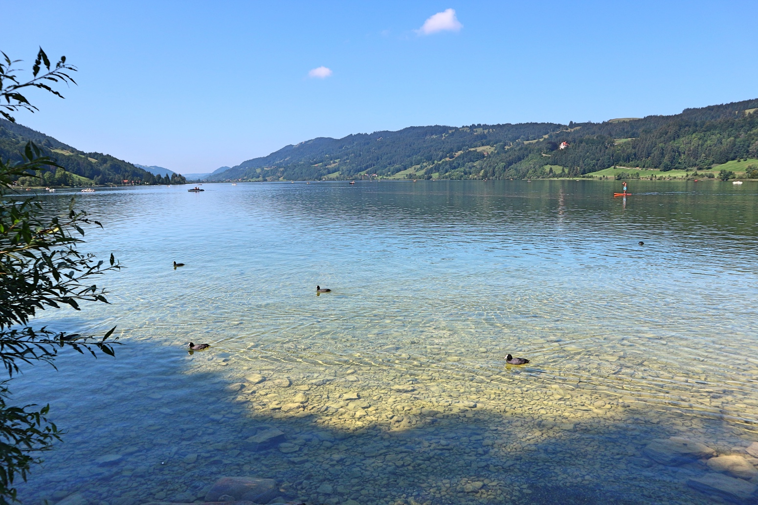 Alpsee in Immenstadt